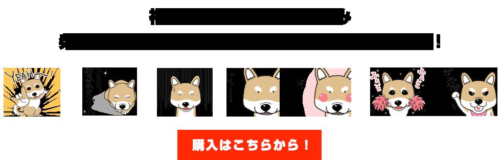 愛犬コロンのLINEスタンプ販売開始!!ものまねタレント|神奈月